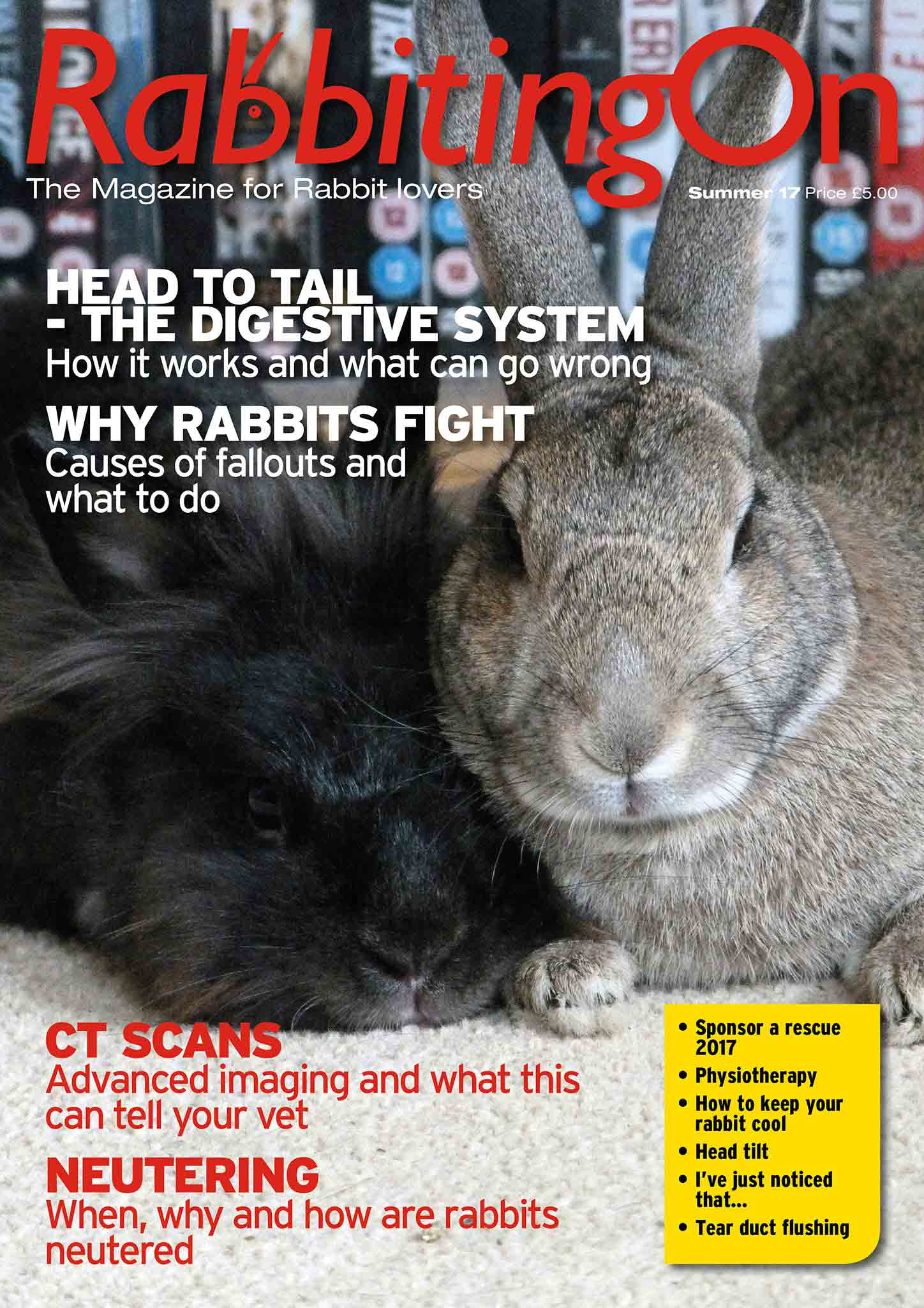 Rabbiting On Whopper Offer   Rabbit Welfare Shop