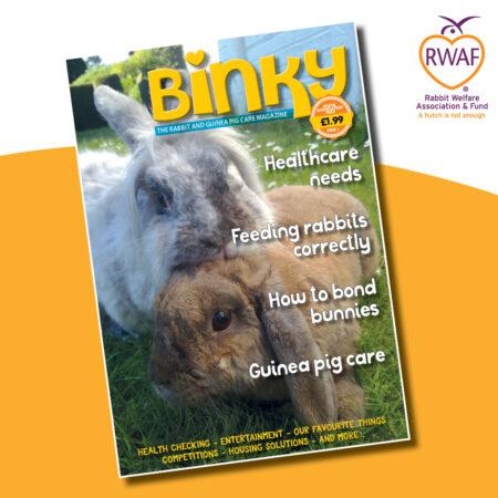Binky e-Magazine